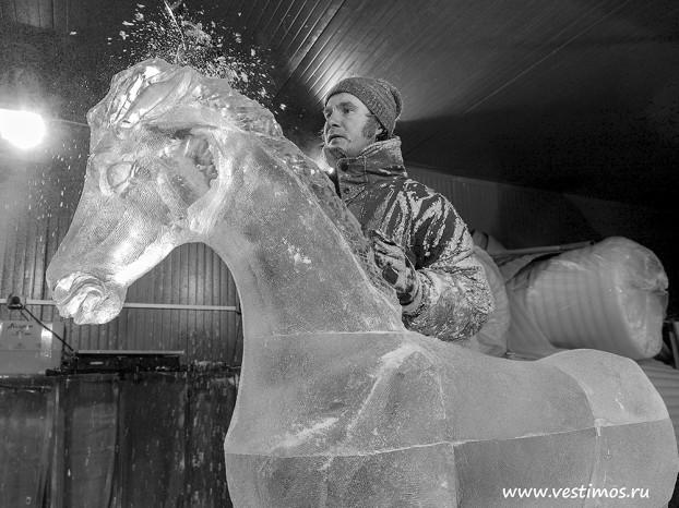 ледяной конь_bw2014