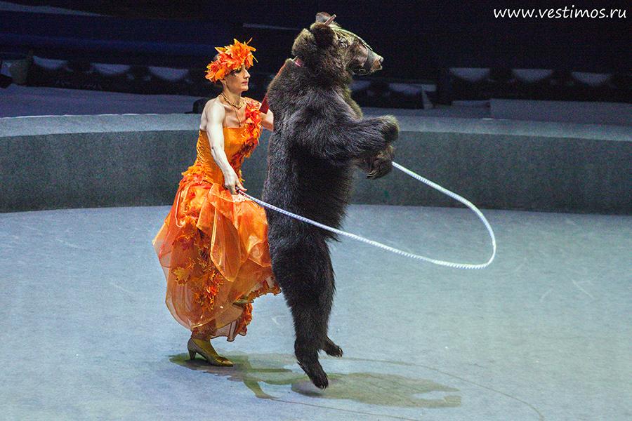 Цирк Дарьи Костюк_6258